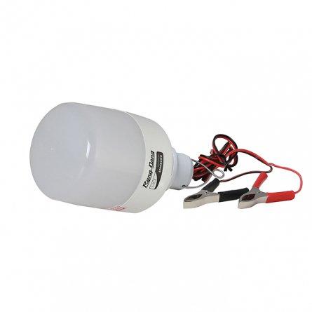 Bóng LED Bulb T70/12W 12-24VDC kẹp 6500K SS Rạng Đông